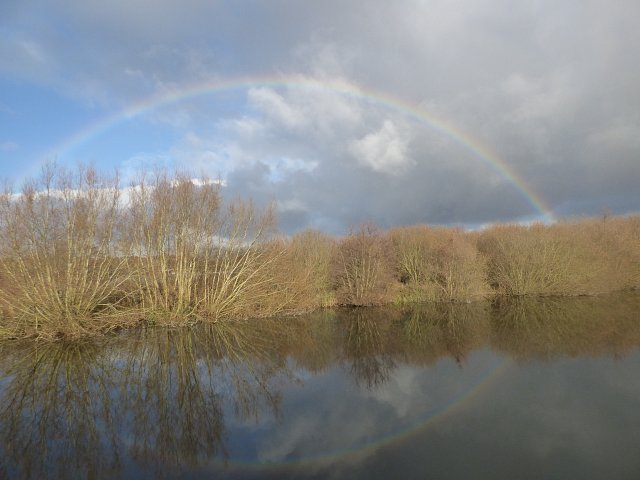 image of a river bank with a rainbow in the background